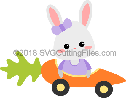 Bunny Carrot Car