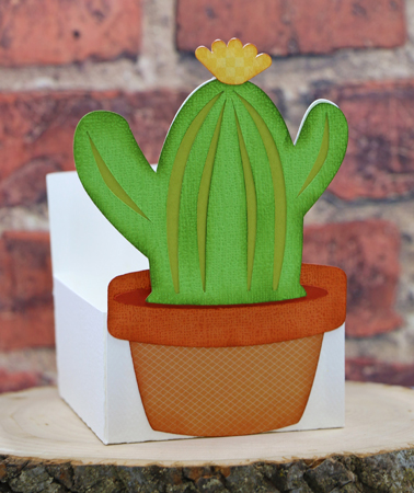 Cactus Treat Box