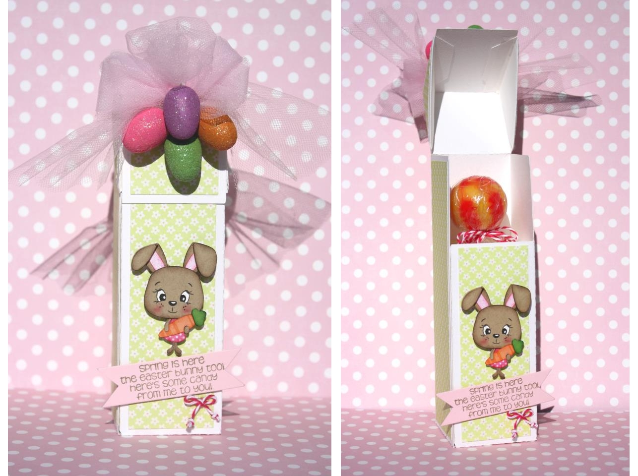 Cake Pop, Lollipop and Tube Box Holder