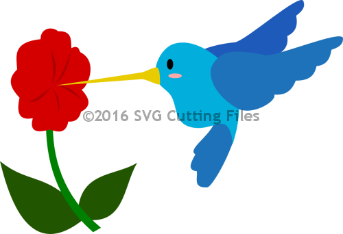 Humming Bird and Flower