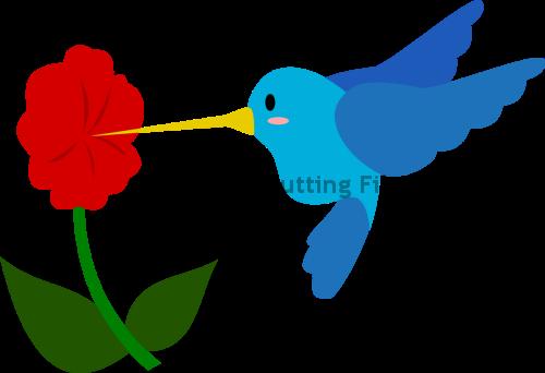 Humming Bird and Flower
