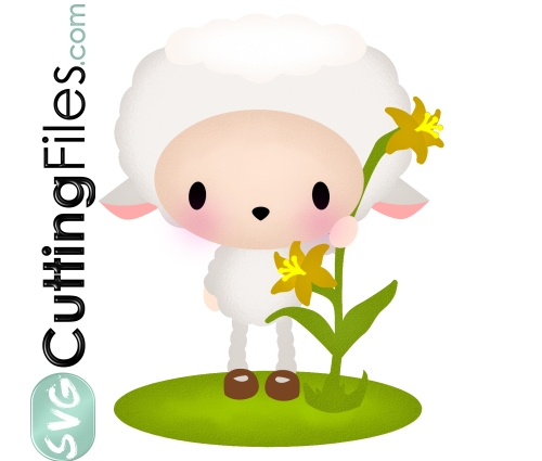 Lily Sheep