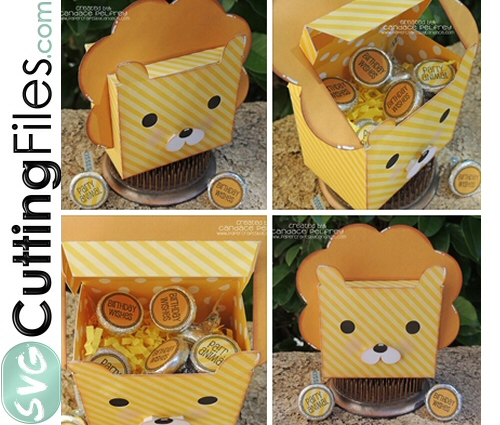 Lion Treat Box