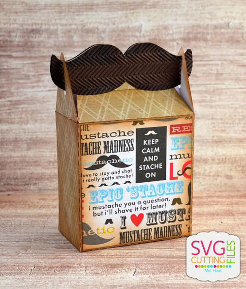 Mustache Gable Box