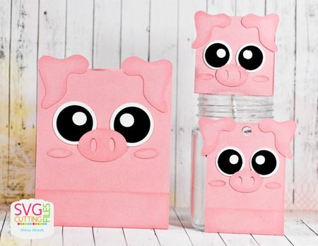 Piggy Card - Hang Tag and Lollipop Set