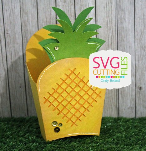 Pineapple Fry Box