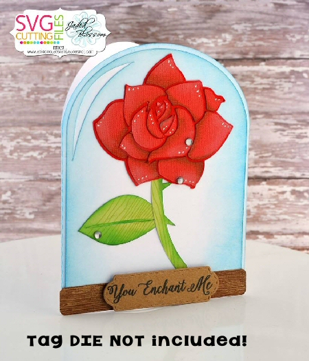 Rose Dome Shaped Card