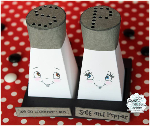 Salt and Pepper Shakers with Holder